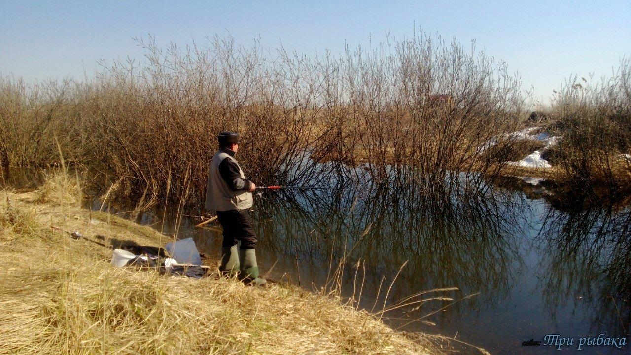 рыбалка в черкассах на дне