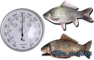 Рыбалка в Самаре при разном атмосферном давлении.